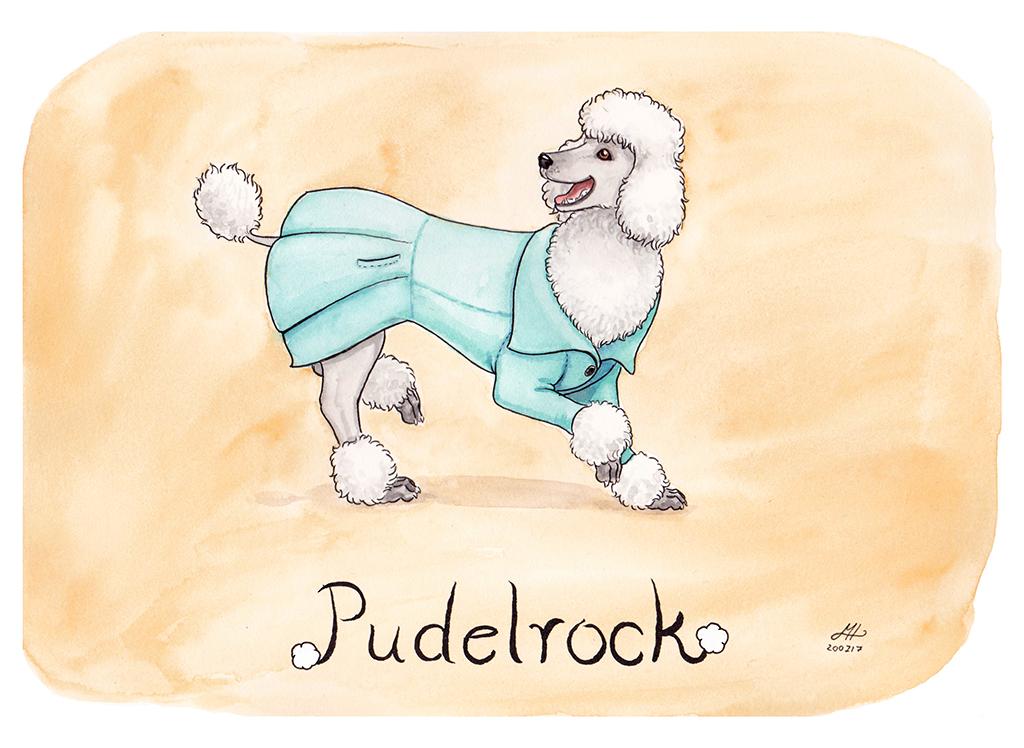 pudelrock illustration ordvits