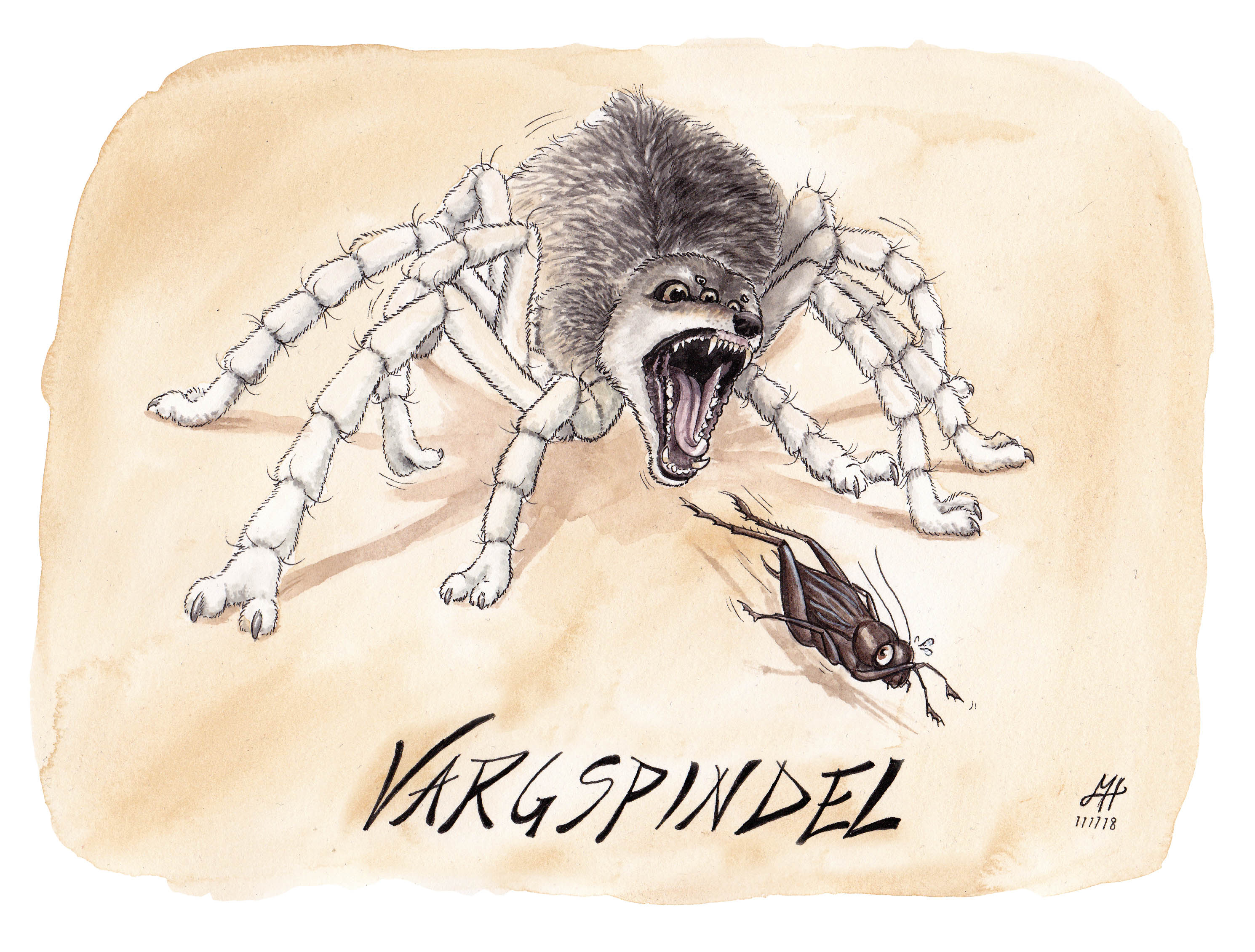 vargspindel illustration ordvits