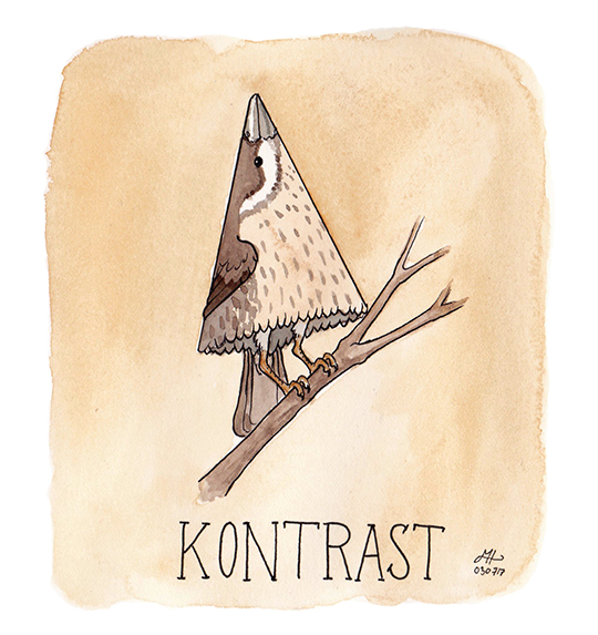 kontrast illustration ordvits