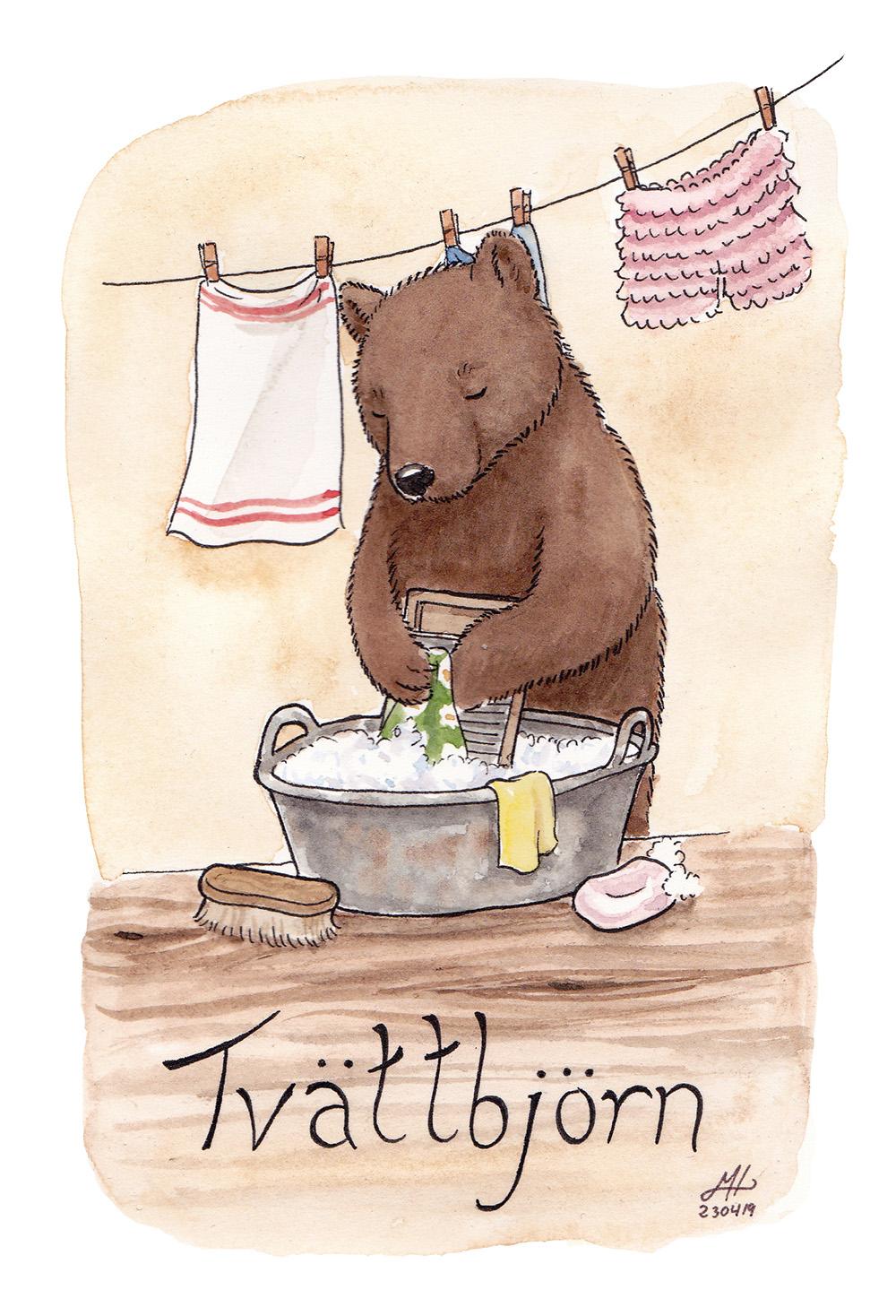 tvättbjörn illustration ordvits