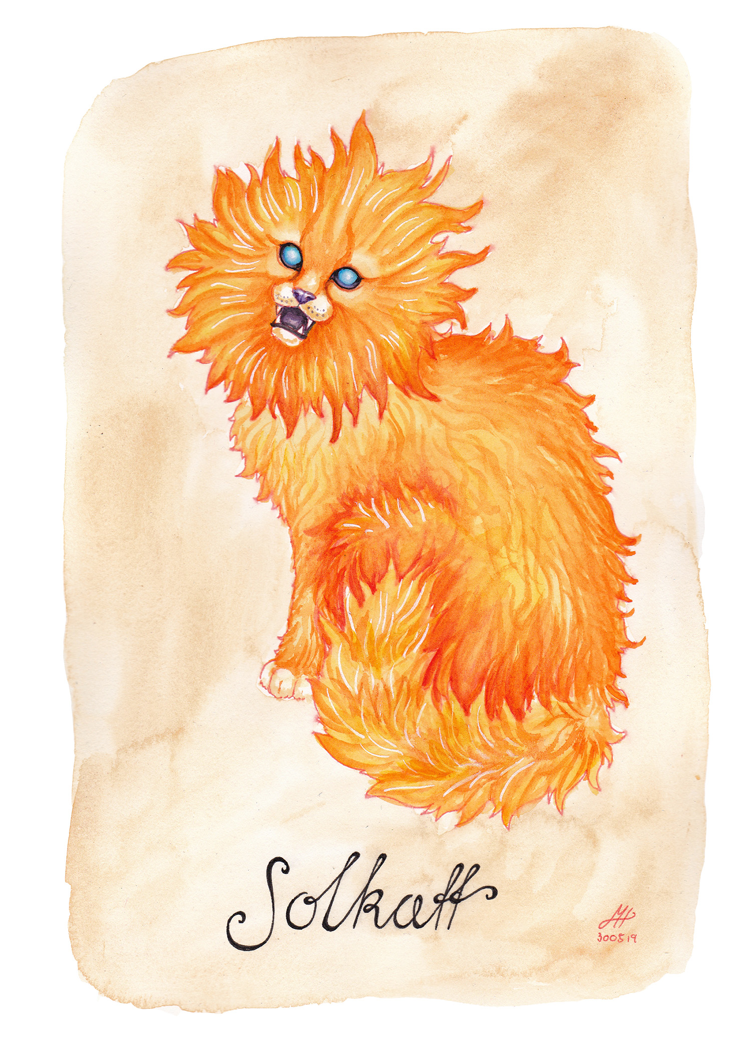 solkatt illustration ordvits