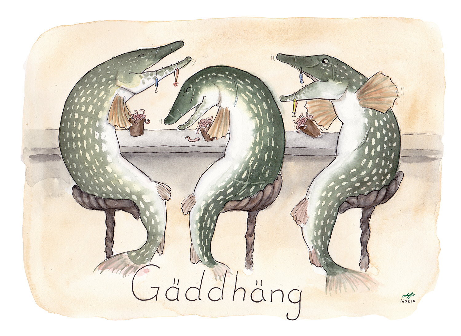 gäddhäng illustration ordvits