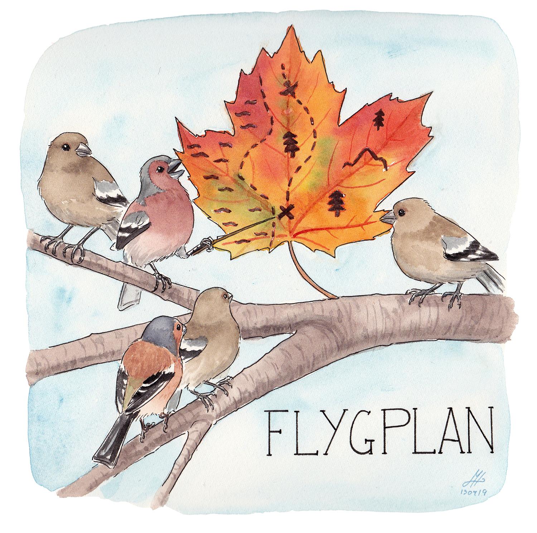 flygplan illustration ordvits